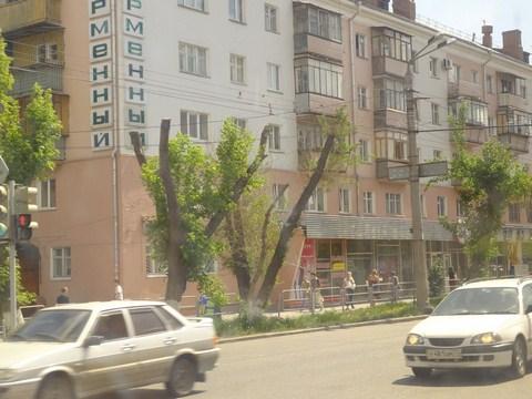 4ni_vetochki_dlya_ptic.jpg (77.68 Kb)