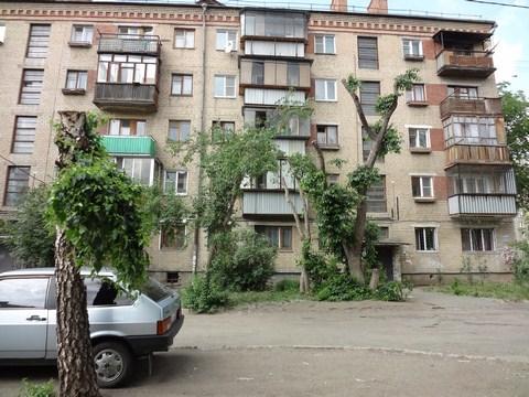yablonka_kotoraya_podarila_vdohnovenie.jpg (96.21 Kb)