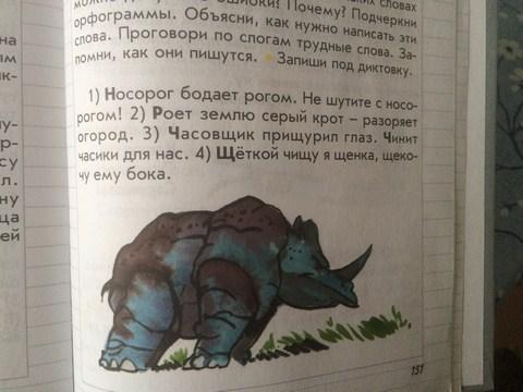 21-_nosorog_kopirovat.jpg (54.83 Kb)